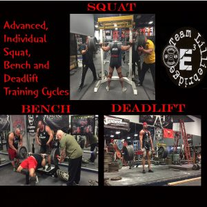 Individual Squat, Bench, & Deadlift Training Cycles